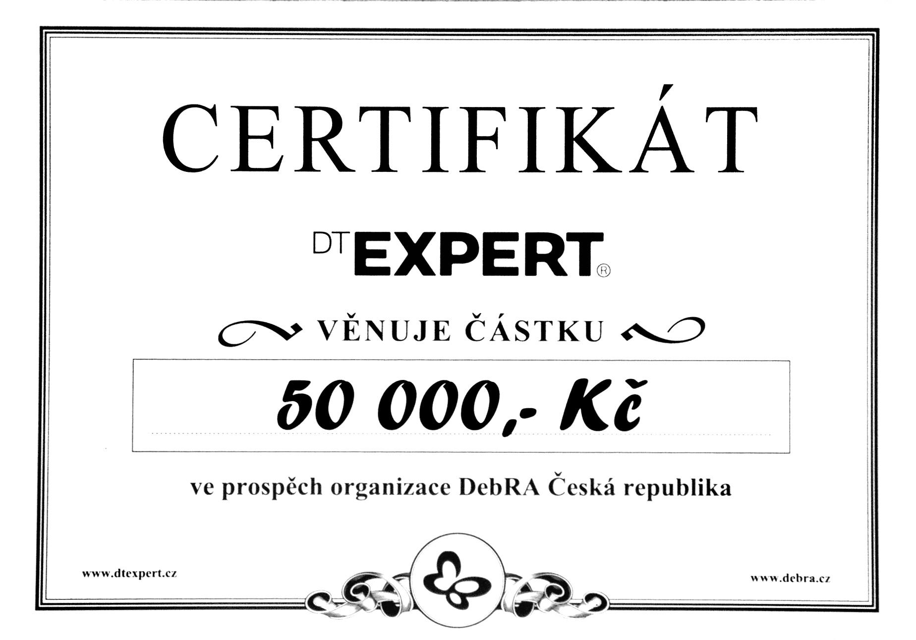 We Support Dt Expert